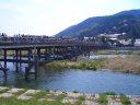 渡月橋 桜